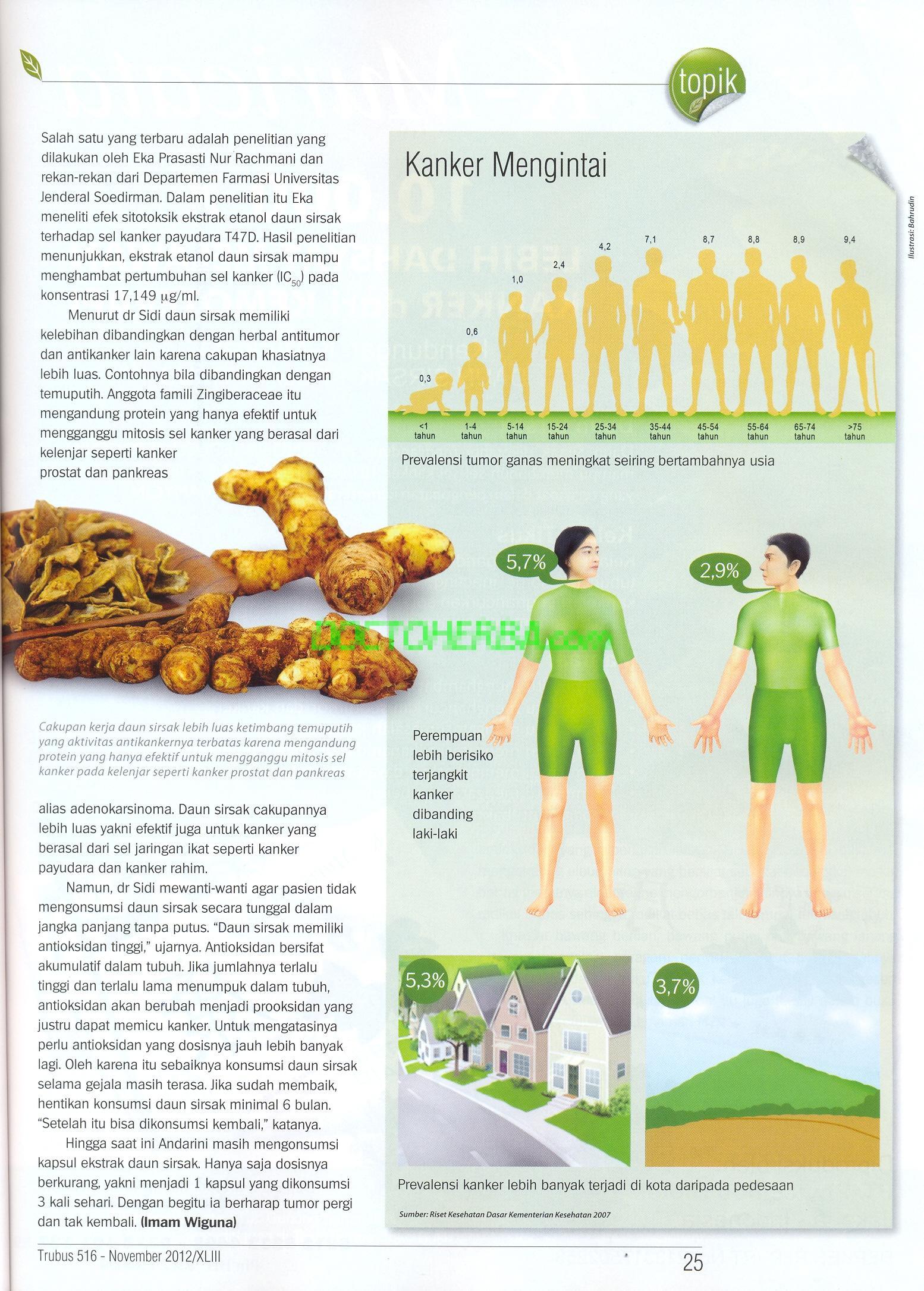 Fakta Daun Sirsak Anti Kanker - Doctoherba 15