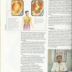 Manggis, Gula darah normal kembali - Doctoherba 2